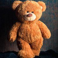 oso gigante de san valentin